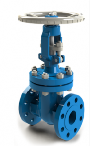 This is a MSA gate valve